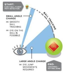Crazy Catch Vision